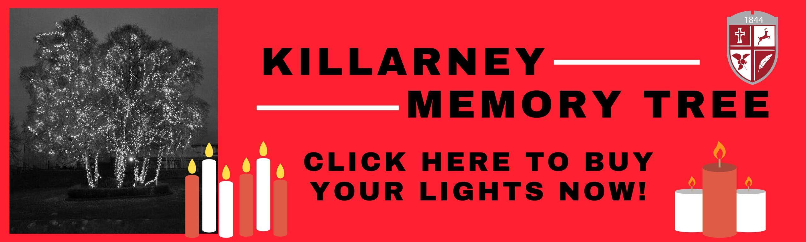 Killarney Memory Tree